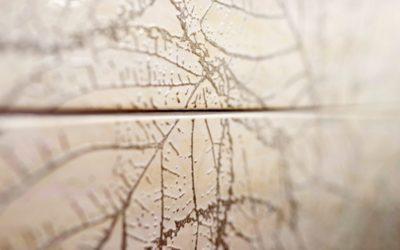 Zdjęcie płytek ceramicznych Szabelski nr 14 400x250